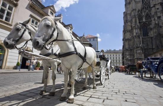 Studierejser til Wien